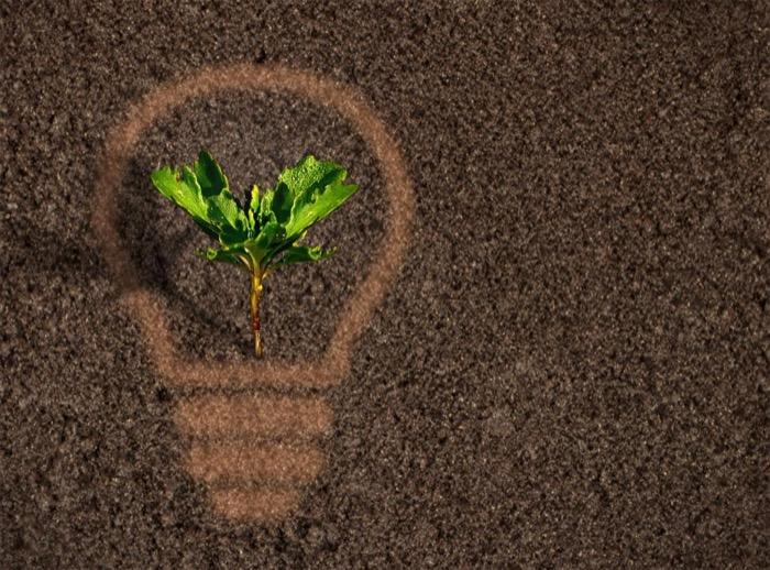 électricité écologique