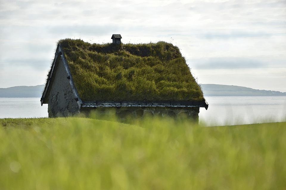 Isoler sa maison et la rendre magnifique: les avantages du toit végétalisé